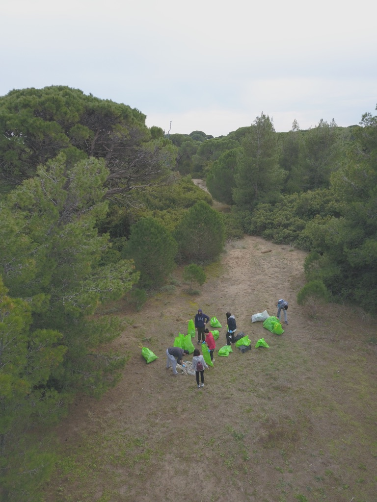 Pineforest & Beach Clean-up, Schinias National Park, 19 January 2019
