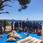 3rd Pineforest and Beach clean up, Schinias National Park, 20 July 2019